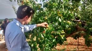 Κατά τη διάρκεια της επίσκεψης στο Δήμο Σικυωνίων όπου οι καλλιέργειες επλήγησαν από το χαλάζι - 18.06.2015
