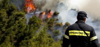 ΕΡΩΤΗΣΗ | Μονιμοποίηση πυροσβεστών πενταετούς υποχρέωσης