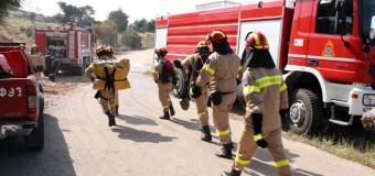 ΕΡΩΤΗΣΗ | Ετοιμότητα Πυροσβεστικής Υπηρεσίας για την αντιμετώπιση των δασικών πυρκαγιών