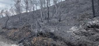 ΔΕΛΤΙΟ ΤΥΠΟΥ | Ο Χρίστος Δήμας στις πυρόπληκτες περιοχές
